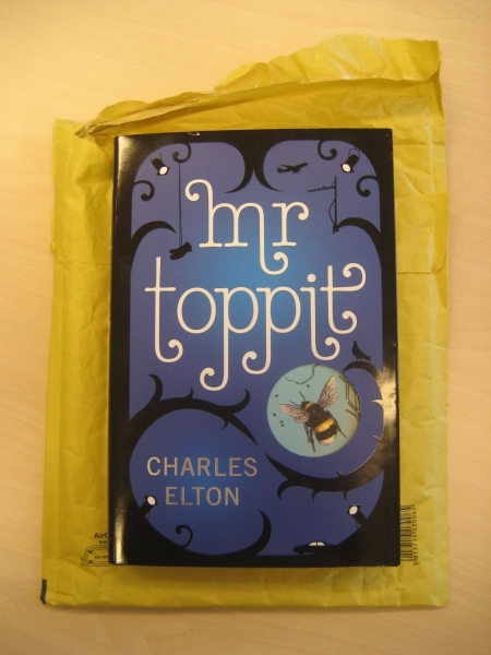 Mr Toppit - Front Cover